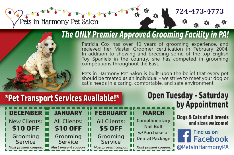 Pets in Harmony Holiday Grooming Coupon
